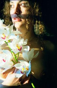orchideamaya